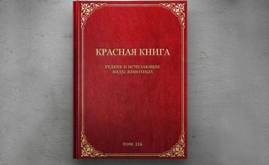 Интересные факты о Красной книге