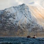 14 интересных фактов о Беринговом море