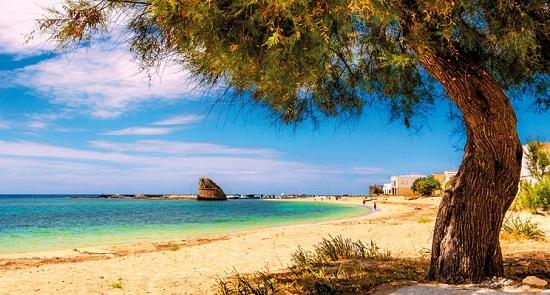 Интересные факты о Сардинии