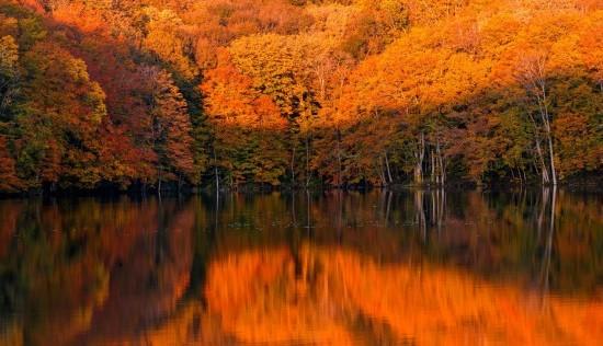 Интересные факты про осень