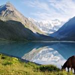 16 интересных фактов об Алтае
