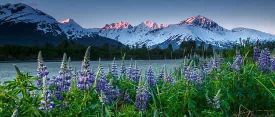 Интересные факты об Аляске