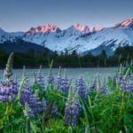 15 интересных фактов об Аляске
