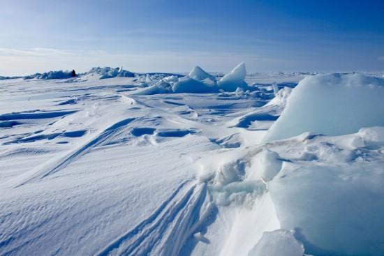 Интересные факты о Северном полюсе
