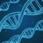 20 интересных фактов о биологии