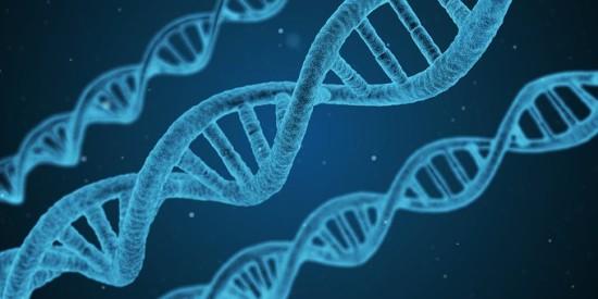 Интересные факты о биологии