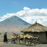 23 интересных факта о Танзании