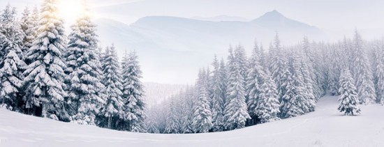 факты о снеге