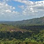 16 интересных фактов о Суринаме