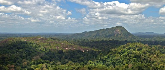 факты о Суринаме