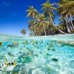 18 интересных фактов о Сейшельских островах