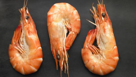 Интересные факты о креветках