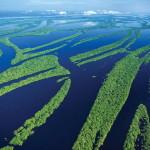 25 интересных фактов об Амазонке