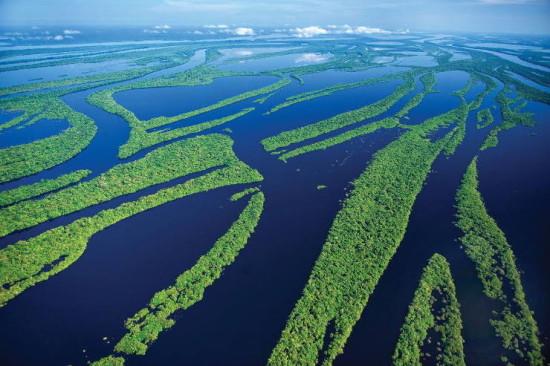 Факты о реке Амазонка