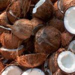 26 интересных фактов о кокосах