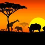 15 интересных фактов об Африке