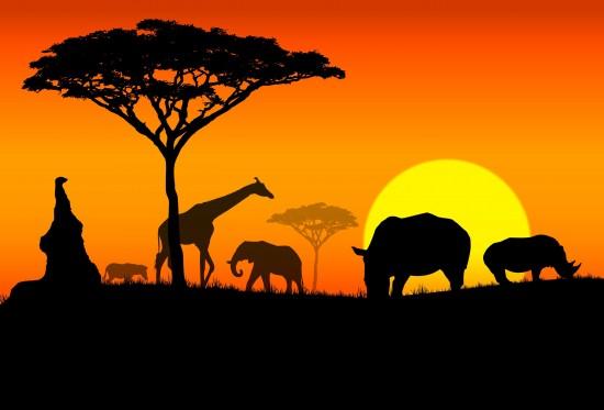 Факты об Африке