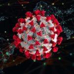 25 интересных фактов о коронавирусе