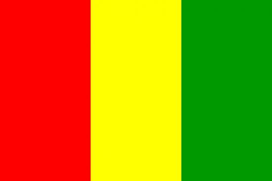 Факты о Гвинее