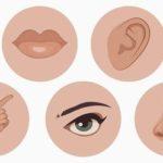 25 интересных фактов об органах чувств