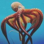 15 интересных фактов об осьминогах