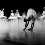 11 интересных фактов о балете