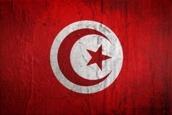 Факты о Тунисе